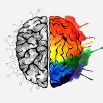 Hoe reageert ons brein op Content Marketing?